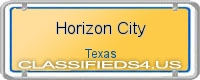Horizon City board